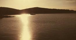 Bild zeigt Sonne