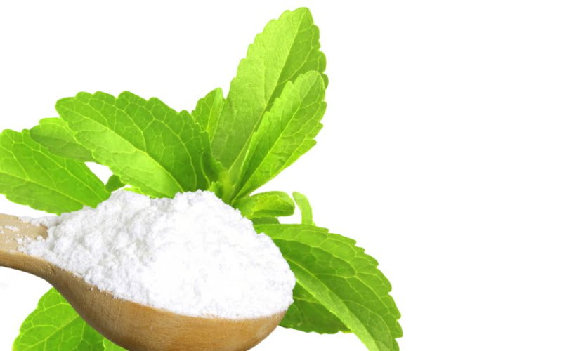 Bild zeigt Steviapflanze